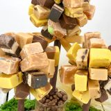 fudge tree (2 of 7)