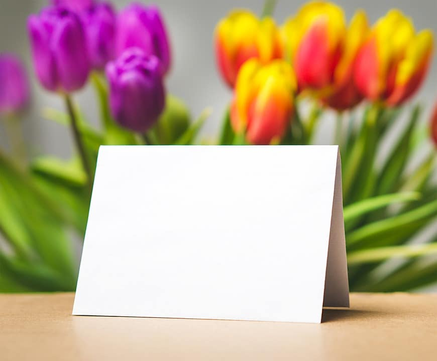 Blank card with flowers in the background