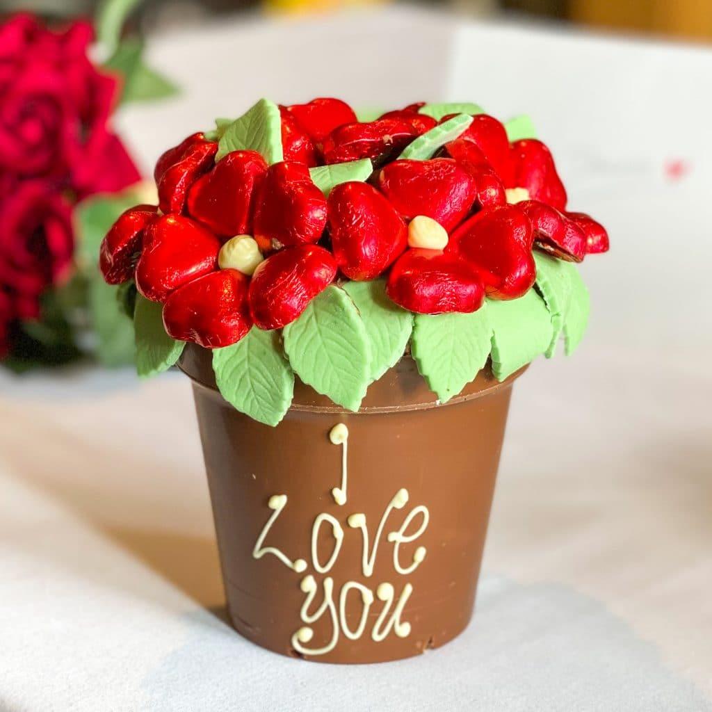 Belgian Chocolate Red Smash Flower Pot