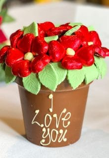 Belgian Chocolate Red Smash Flower Pot